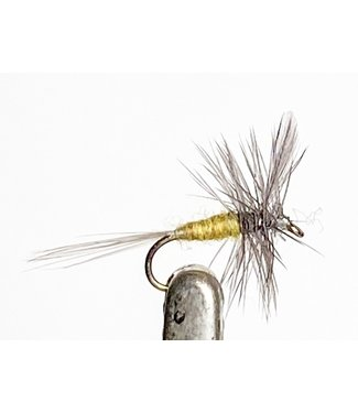 Solitude Flies Blue Wing Olive