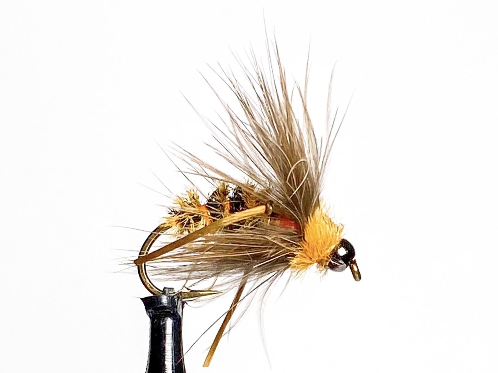Catch Flies October Caddis Pupa size 10