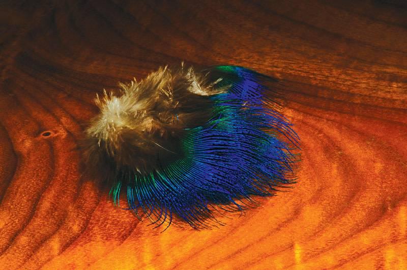 Hareline Dubbin Blue Peacock Neck Feathers