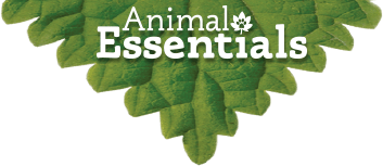Animal Essentials Supplements a Complete Diet