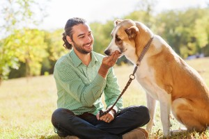 Holistic Health Basics for Your Pet