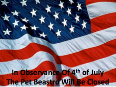 Essential Fourth Of July Tips For Your Pets