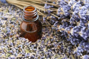 Essential Oils – Purity and Process