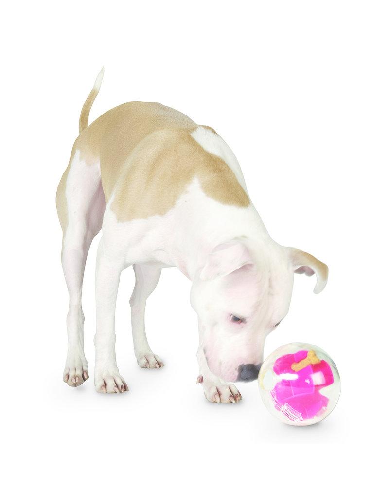 Planet Dog Planet Dog Orbee-Tuff Mazee Raspberry