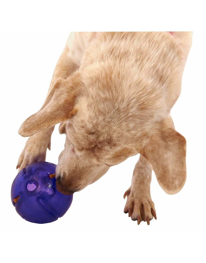 Planet Dog Planet Dog Orbee-Tuff Guru Purple