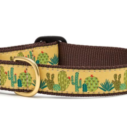 Up Country Inc. Up Country Dog Collar Succulents- Large