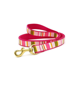 Up Country Inc. Up Country Dog Collar Lead Donna Stripe 6'