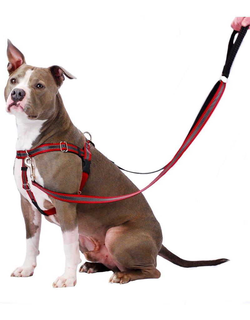 "2 hounds Design 2 Hounds Design Freedom No-Pull Harness 1"" Reflective Medium Red"