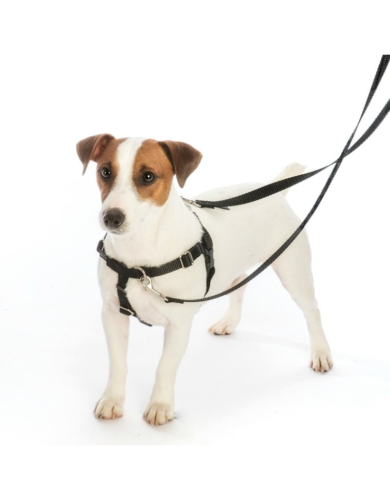 "2 hounds Design 2 Hounds Design Freedom No-Pull Harness 1""  Medium Black"
