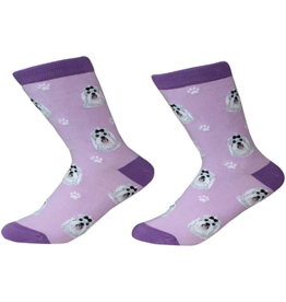 Sock Daddy Sock Daddy Unisex One Size Cotton Socks | Maltese