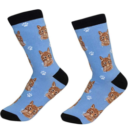 Sock Daddy Sock Daddy Unisex One Size Cotton Socks | Tabby Cat Orange