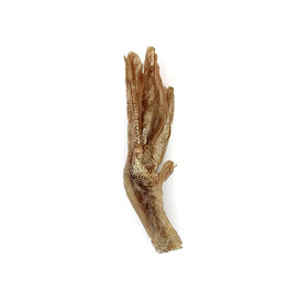 Vital Essentials Vital Essentials Raw Bar Duck Feet Single