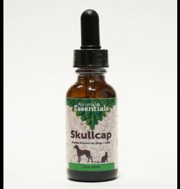 Animal Essentials Animal Essentials Supplements | Skullcap 1 oz