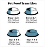 Koha Koha Canned Cat Food Chicken Pate 5.5 oz single