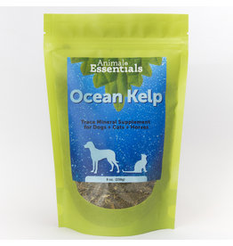Animal Essentials Animal Essentials Ocean Kelp 8 oz