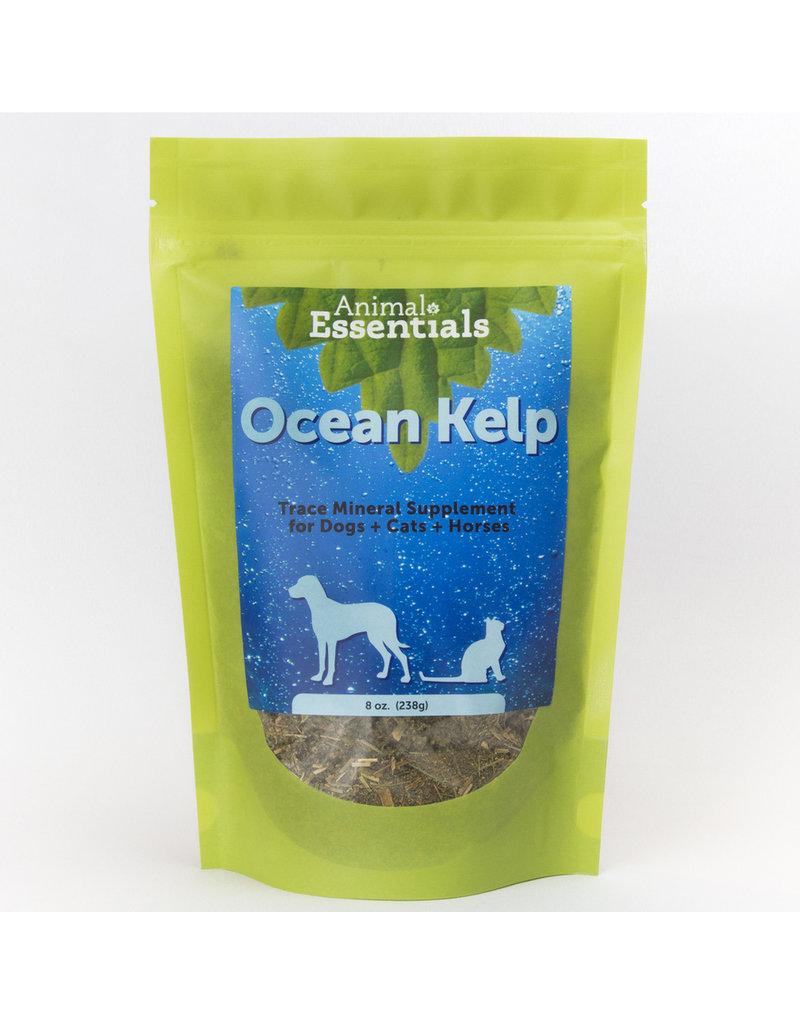 Animal Essentials Animal Essentials Ocean Kelp 8 oz
