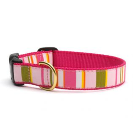 Up Country Inc. Up Country Dog Collar Donna Stripe Large