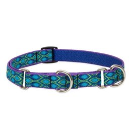 "Lupine Originals Martingale Collar 1"" Rain Song 15""-22"""