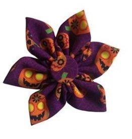 Huxley & Kent Huxley & Kent Halloween Pinwheel | Great Pumpkin Small