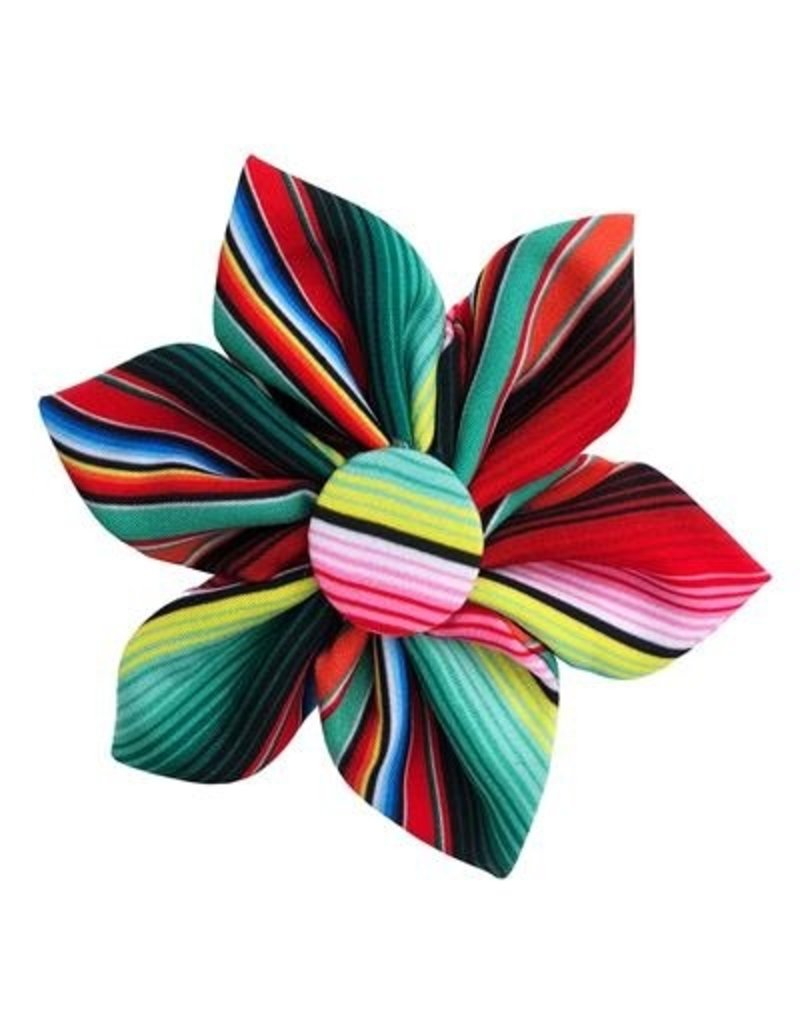 Huxley & Kent Huxley & Kent Pinwheel Serape Stripe Small