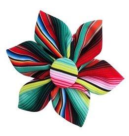 Huxley & Kent Huxley & Kent Pinwheel | Serape Stripe Small