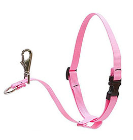 "Lupine Lupine Basics No-Pull Harness 3/4"" Pink 16""-26"""