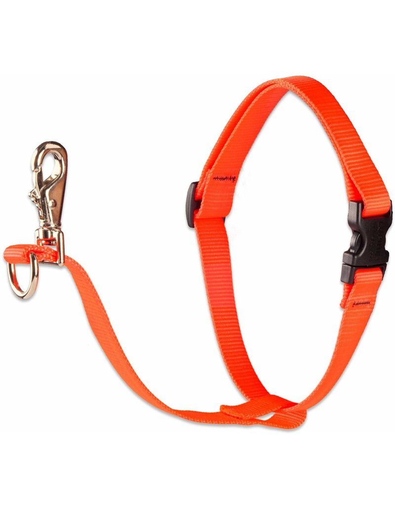 "Lupine Lupine Basics No-Pull Harness 3/4"" Blaze Orange 16""-26"""