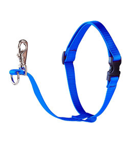 "Lupine Lupine Basics No-Pull Harness 1"" Blue 26""-38"""