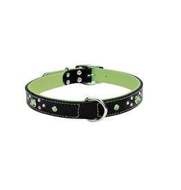 "Coastal Coastal Pet Collar 1"" Green Jewel 22"""
