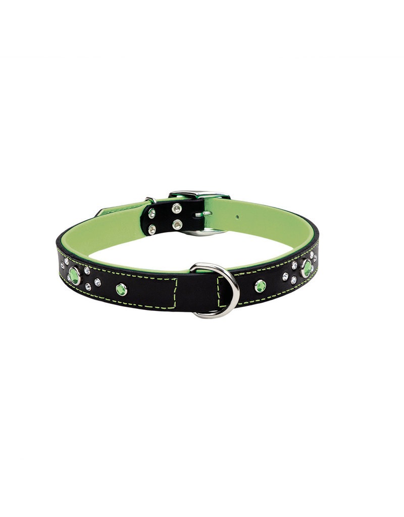 "Coastal Coastal Pet Collar 1/2"" Green Jewel 12"""