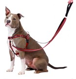 """2 hounds Design 2 Hounds Design Freedom No-Pull Harness 5/8"""" Reflective Small Red"""