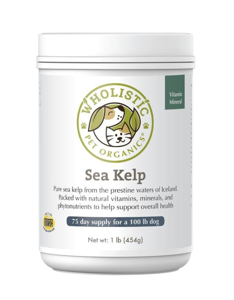 Wholistic Pet Organics Wholistic Pet Organics Pure Sea Kelp 8 oz