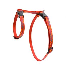 Lupine Cat H-Harness | Go Go Gecko 9-14""