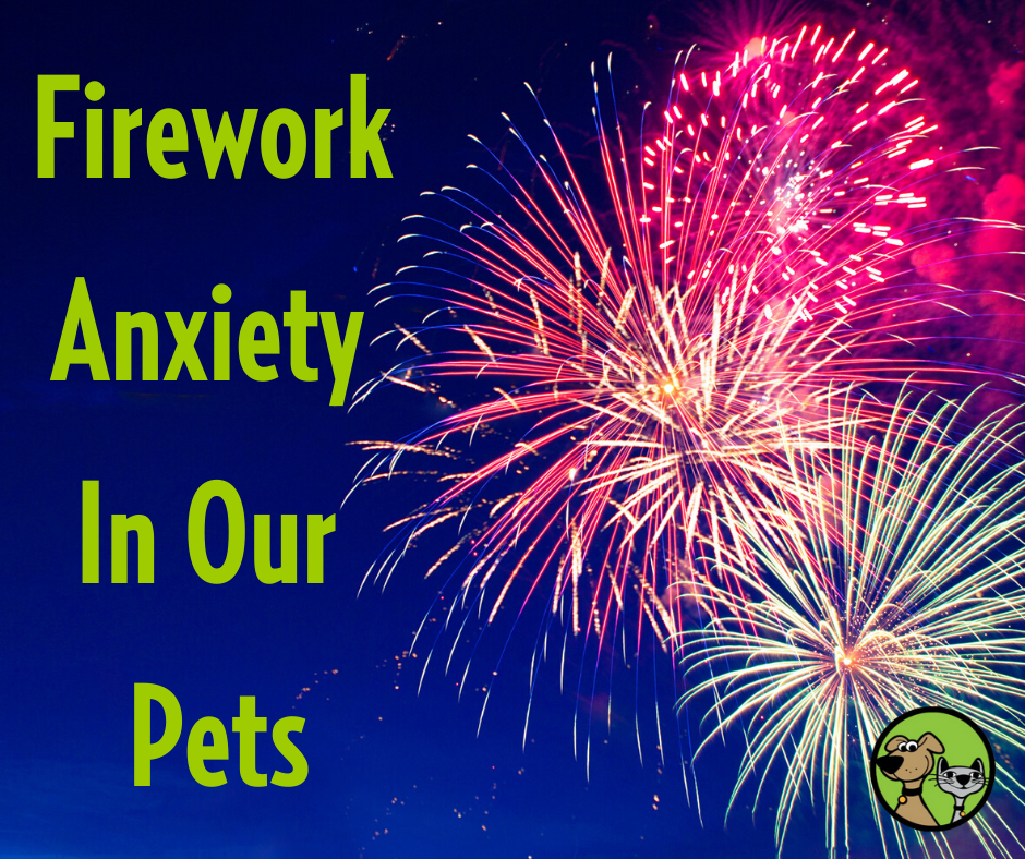 My Dog and/or Cat Hates Fireworks