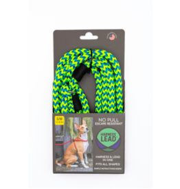 Harness Lead Harness Lead | Peacock Small 14-40 lbs
