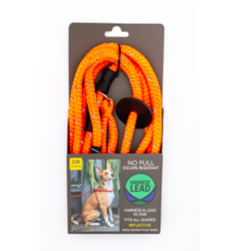 Harness Lead Harness Lead | Orange Reflective Small 14-40 lbs