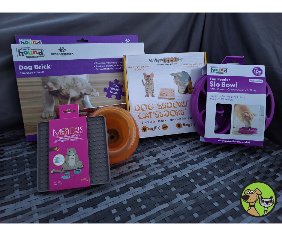 Back To School For Cats & Dogs With Interactive Puzzle Toys