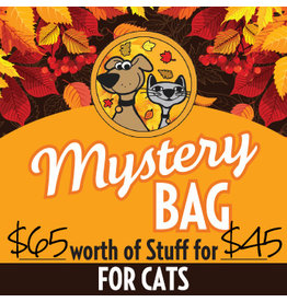 Fall Mystery Bag for Cats