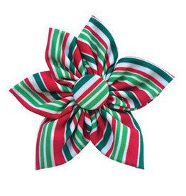 Huxley & Kent Huxley & Kent Holiday Pinwheel | Candy Cane Small