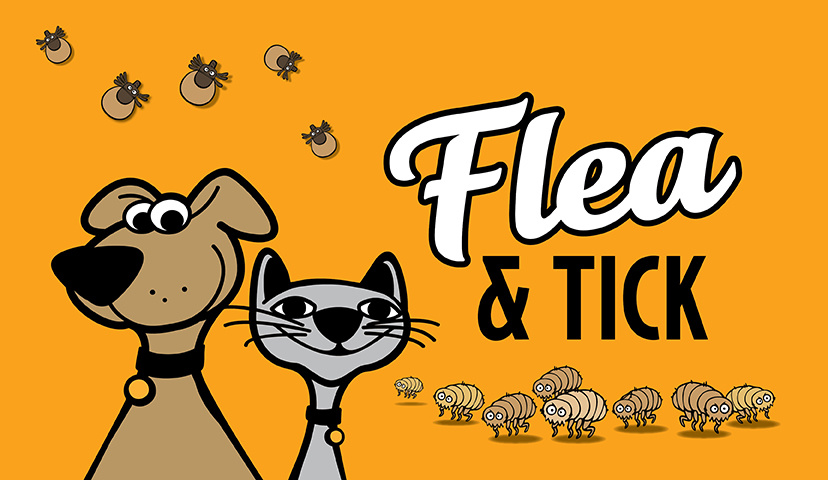 The Best All Natural Flea & Tick Pet Products