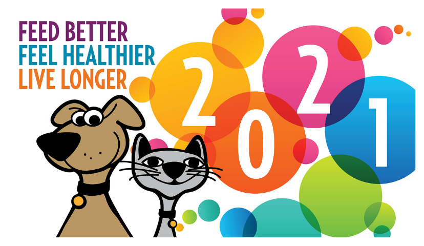 8 New Year's Resolutions For Your Dog Or Cat