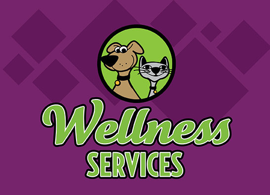 Nutrition & Wellness Services