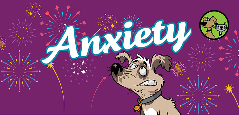 Anxiety & Pets