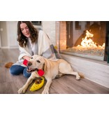 PLAY P.L.A.Y. Dog Toys Camp Corbin Collection | K9 Kayak