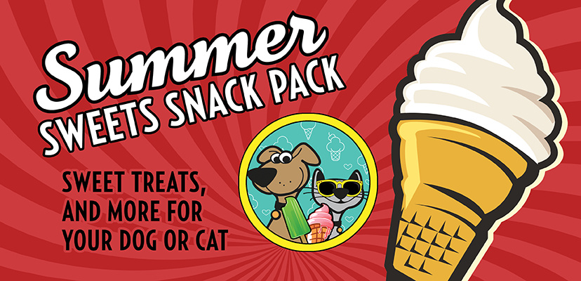 The Best Summer Sweets For Cats & Dogs