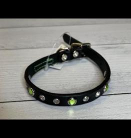 "Coastal Coastal Pet 5/8"" Collar | Green Jewel 16"""