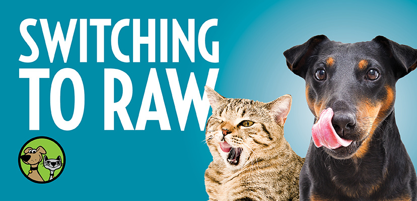 Switching To A Raw Pet Food Diet