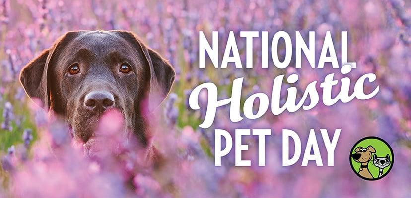 Celebrate National Holistic Pet Day