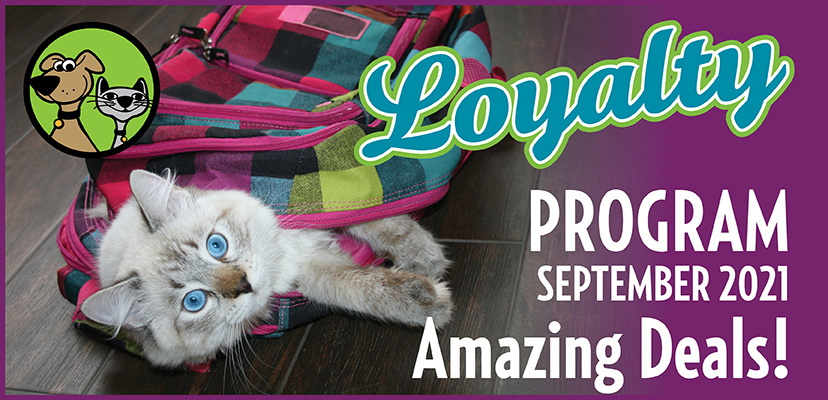 September 2021 Specials & Savings For Cats & Dogs