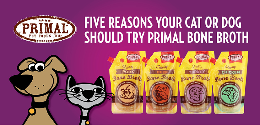 Five Reasons Your Cat or Dog Should Try Primal Bone Broth